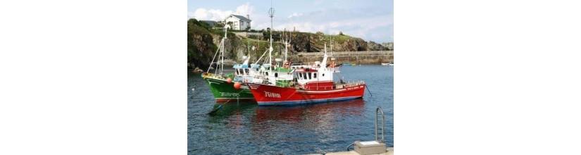 Submarinos, pesqueros, mercantes ybarcos de pasaje