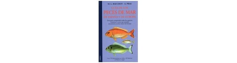 Vida Marina y Oceanografía.