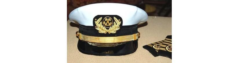 Navegación profesional
